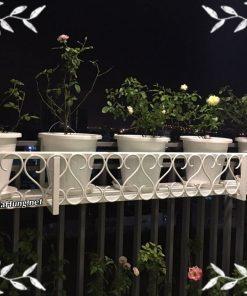 Xưởng làm khung giàn trồng cây ban công CK1212 tại TpHCM giá rẻ